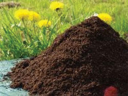 Bio-Organic fertilizer